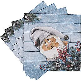 Napkins North Pole Santa  -  20 pcs.